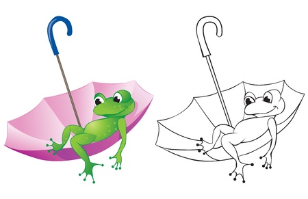 Frog floats sitting in an umbrella. Color and contour drawing Vector