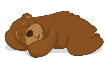 Sleeping bear. Isolated on white background