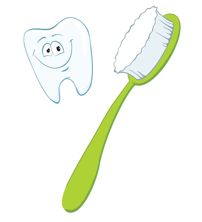 Cartoon tooth and toothbrush.  Vector