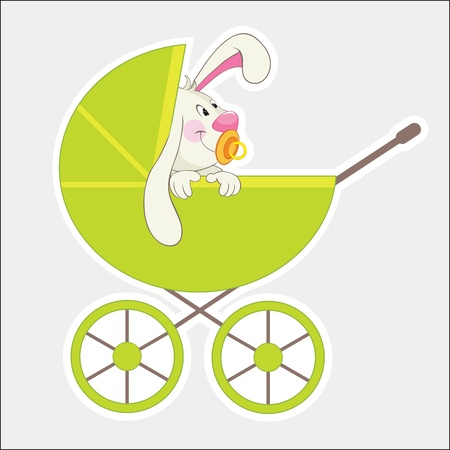 Rabbit in the baby carriage.