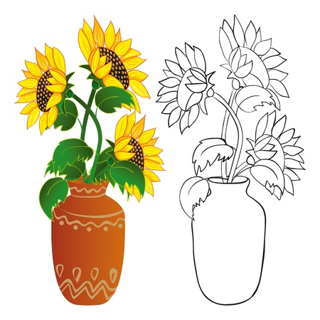 Sunflower in vase. Color and outline illustrations
