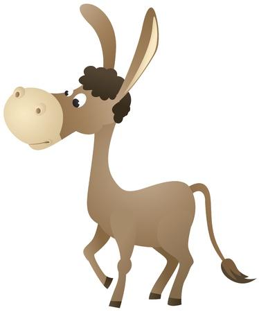 jackass: Fun cartoon donkey Illustration