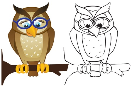 Owl on branch with glasses. Color and outline Stock Vector - 13519323