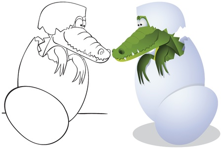Crocodile hatched from eggs. Outline and color illustrations Vector
