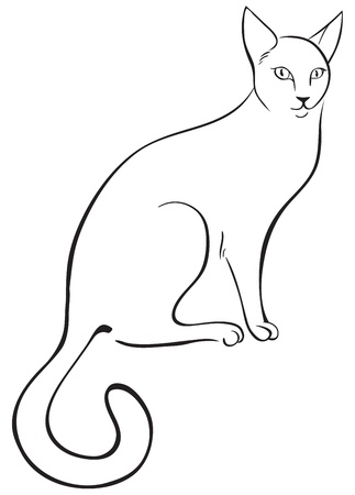 line drawings: Outline cat