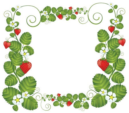 Strawberry floral frame background EPS10  Contains transparent objects used for shadows drawing  Vector