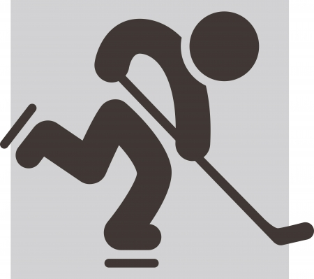 Winter sport icon - Hockey icon Vector