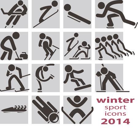 Winter sport icons 2014 Stock Vector - 24546309