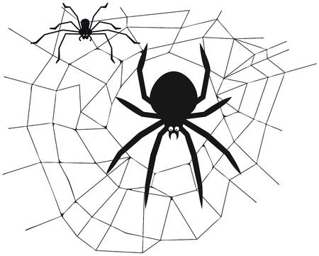 Spin in het midden van het web - vectorillustratie