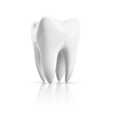 bleach: upstanding human tooth isolated on white backgroud