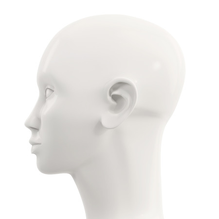 mannequin head: side view of white female mannequin head