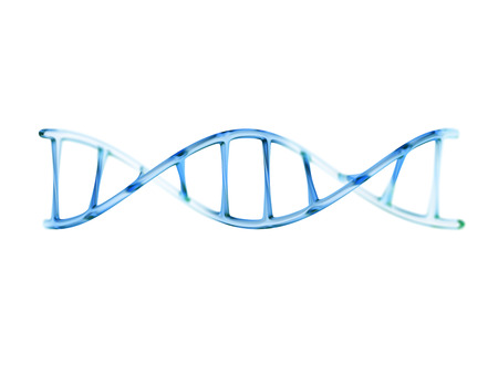 proteins: fragment of human DNA molecule, 3d illustration isolated on white background