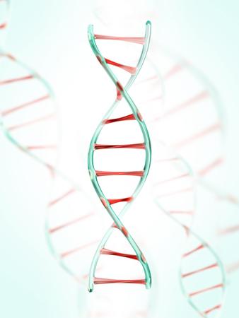 proteins: fragment of human DNA molecule, 3d illustration