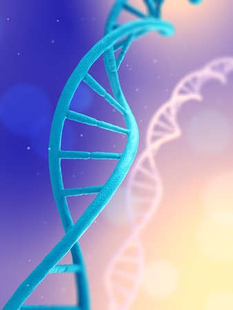 human chromosomes: microscopic view of a DNA molecule Stock Photo