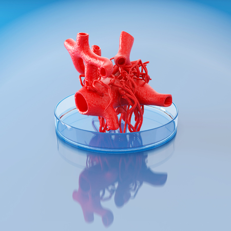 Concept of bioprinting of circulatory system. Part of the blood vessel ready for transplantation to the patient. 3D illustration. Banque d'images