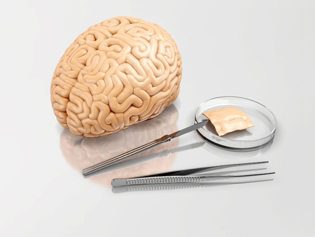 Human brain and surgical instruments on a laboratory table; 3d illustration Фото со стока