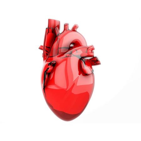 A blood donation concept, anatomical heart made by bag. 3D illustration isolated on white background.