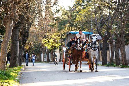 Eilanden, Istanbul - 12 oktober, 2009: On Prinsen Island paarden worden nog steeds gebruikt voor het vervoer Redactioneel