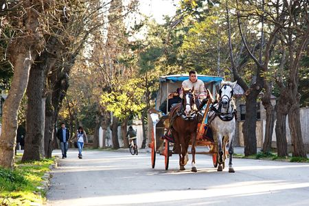 Islands, Istanbul - October 12, 2009: On Princes Island horses are still used for transportation