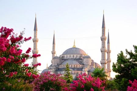 Sultanahmet, Blue Mosque Stock Photo - 7505719