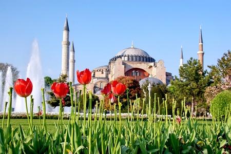 Garden of Hagia Sophia in spring photo
