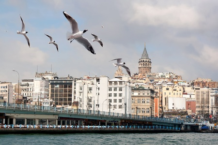 Istanbul in winter photo