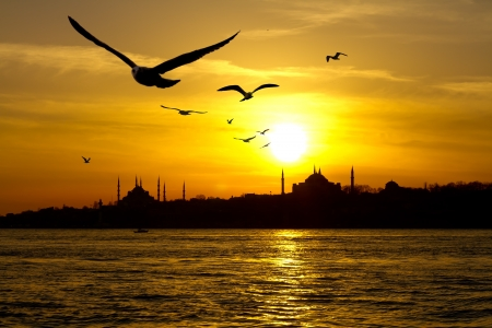 blue mosque: Istanbul Stock Photo