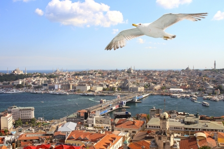 Birds eye view of Istanbul photo
