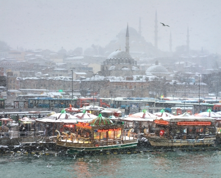 froze: ISTANBUL - JANUARY 31: First snow of the season on January 31, 2012 in Istanbul. A giant snowstorm froze daily life as well as the streets all around the city of Istanbul. Eminonu in the snow rain
