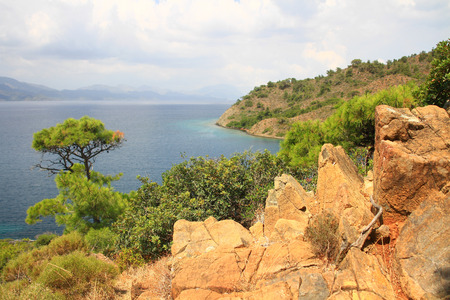Coastal landscape of Mediterranean Sea with a pine tree and red rocky formations. Crane Shot. Landscape of sea and wild nature surrounded by red rocks that contrasts with the azure blue of the Mediterranean. View of sea coast from top of a hill in southea