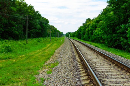 forest railway: Railway receding into the distance to the horizon on a background of green forest Stock Photo