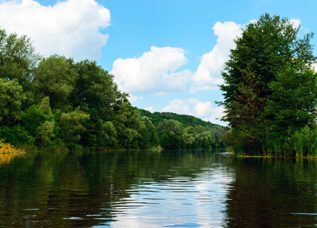 dense forest: Lake View (River). On the banks of the green dense forest