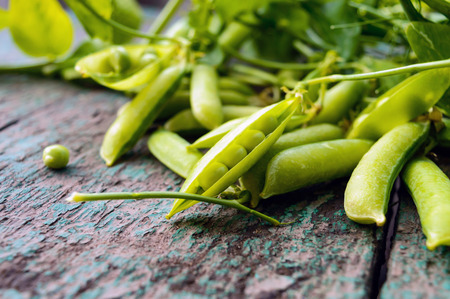 freshly: Green freshly picked pea pods and stems. Stock Photo