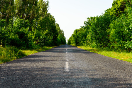 goes: The road made of asphalt, goes away. On both sides of the green trees