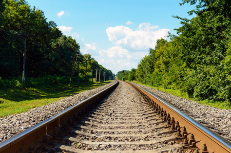 both sides: The railway goes to horizon, on both sides of the green dense forest. Stock Photo