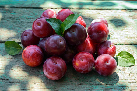 alycha: A pile of ripe plum cultivar Greengage (alycha) on a wooden table. Stock Photo