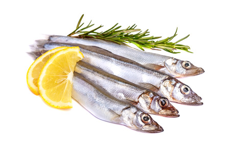 Raw fish capelin and a branch of rosemary, lemon slices isolated on white background.