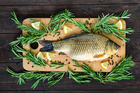 Big live carp (crucian) on a cutting board with rosemary branches. Fresh catch. Top view.