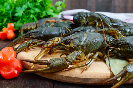 Live crayfish on a dark wooden background. Close up