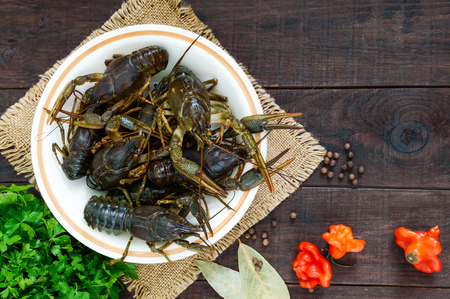 Live crayfish in a ceramic bowl on a dark wooden background. The top view Stock Photo