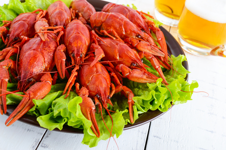 A large pile of boiled crawfish on a ceramic plate,  glasses of beer on a white wooden background.