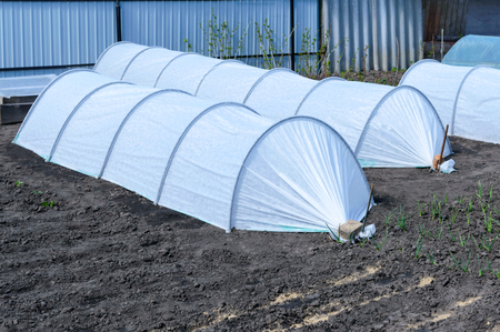 Garden greenhouses in the form of arches covered with fiber