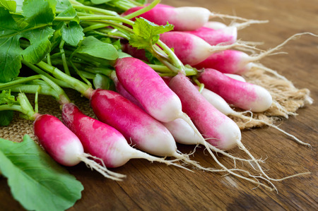 Summer harvested red radish. Growing organic vegetables. Large bunch of raw fresh juicy garden radish on wooden background ready to eat. Closeup.