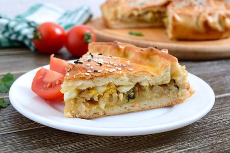 Cabbage pie. Piece of tasty freshly baked homemade vegetable pie with cabbage, spinach, eggs and sesame seeds