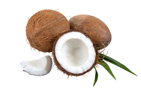 Coconut on a white background, isolated. Whole coconut, halves, shells, pieces of coconut on a green palm leaf. Tropical fruit.