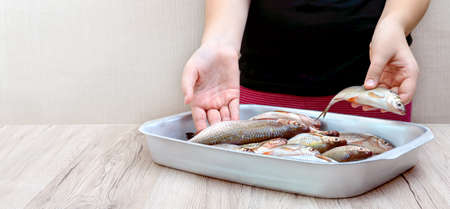 Fresh catch of river fish in a bowl on the table. Hands hold raw fish.