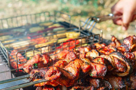 Juicy slices of meat on skewers and grilled vegetables on an open barbecue grill. Stock Photo
