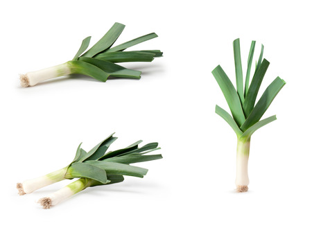 leeks: Leeks on a white background