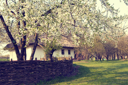 pirogovo: Ukrainian village in the spring in Pirogovo near Kiev Stock Photo