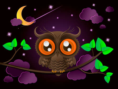 nocturnal: Owl and moon, nocturnal sky. illustration